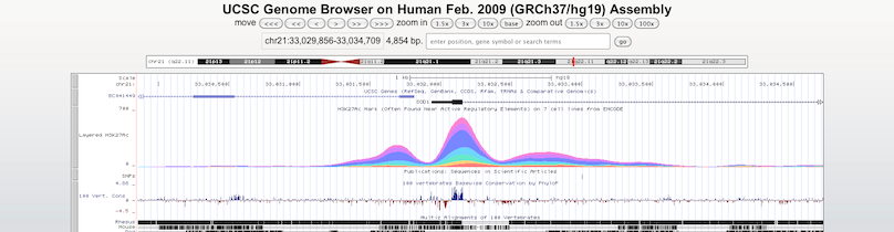 UCSC Genome Browser Blog